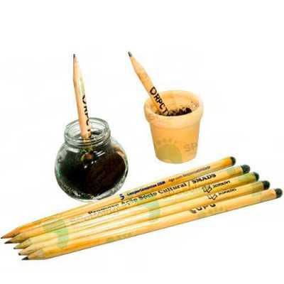 Lápis Semente Ecológico personalizados - MT Brindes