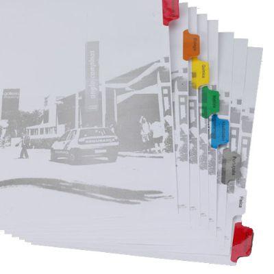 Divisória para Fichário - Com 8 projeções - Plastificação Colorida - Impressão 1 cor.
