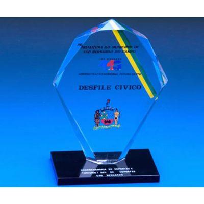 Acrílicos Bristol - Troféu de acrílico