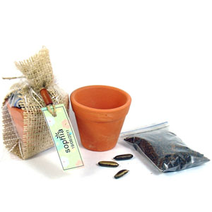 Kit jardinagem