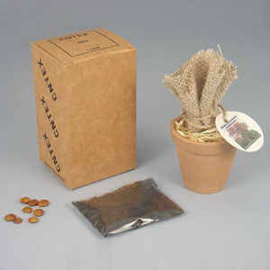Brindes da Terra - Kit jardinagem com 4 itens.