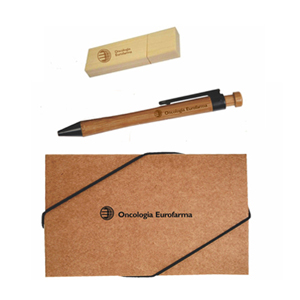 Connection Brindes - Kit personalizado Pen Drive e Caneta em Bambu.