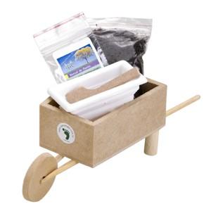 sp-ecologia - Kit cultivo com carrinho de mão artesanal de madeira.