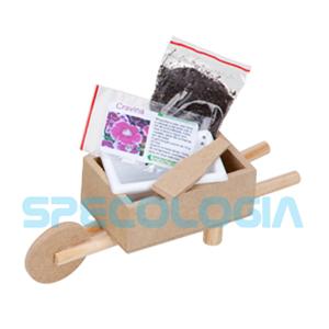 Kit para cultivo com carrinho de mão. - SP Ecologia