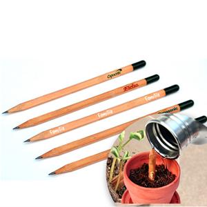 sp-ecologia - Lápis semente.