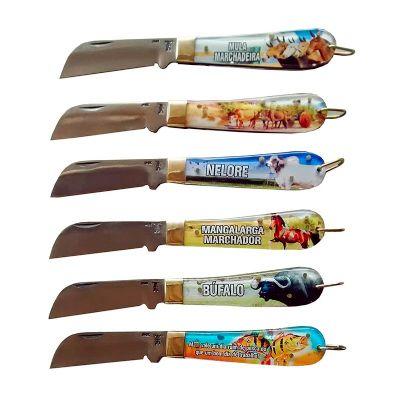 Armazém Brasileiro - Canivete em inox com cabo em acrílico