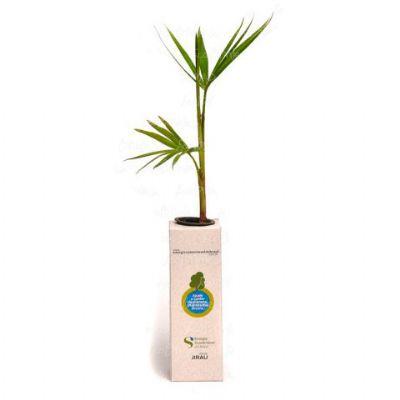 Baby tree reciclato quad - Ecobrindes