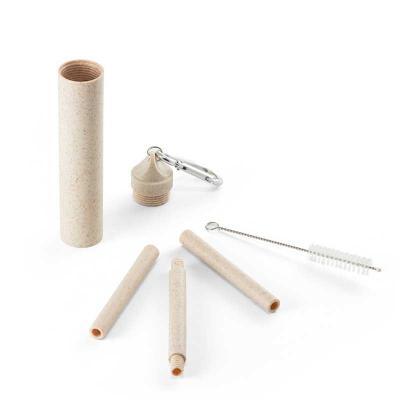 Conjunto de canudo. Fibra de bambu. 1 canudo telescópico, 1 escova de limpeza e estojo com mosque...