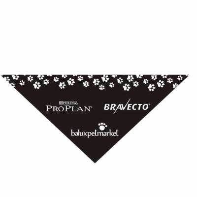 Bandanas triangular