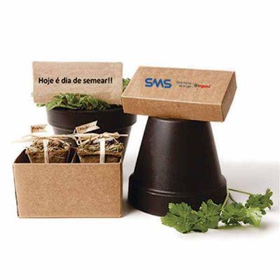 Kit de cultivo personalizado - YepUp Presentes Criativos