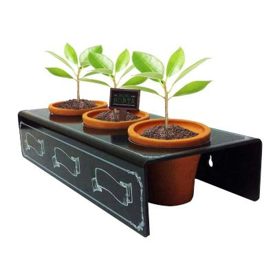 Mini horta personalizada - YepUp Brindes e Presentes Cria...
