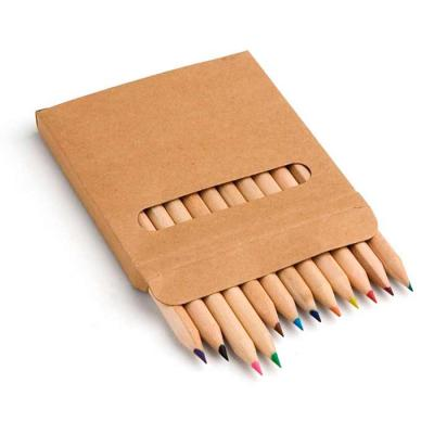 Kit 12 MIni Lápis de Cor