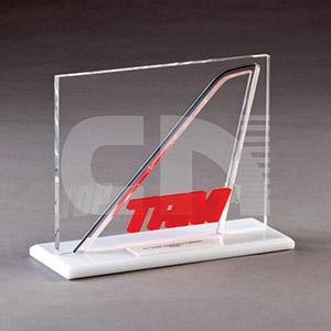 CN Acrilycs - Troféu em acrílico branco e cristal.