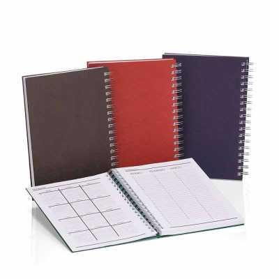 Caderno capa dura. São 96 folhas, 192 páginas com 8 páginas iniciais padrão sendo dados pessoais, calendário, planejamento anual e trimestral. - Crazy Ideas