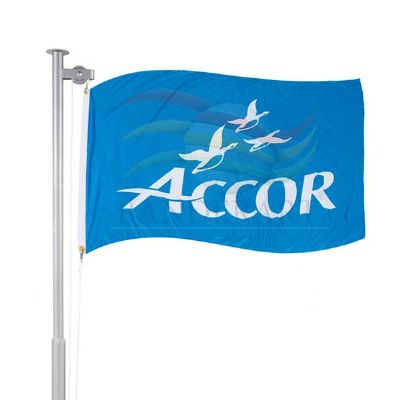 Bandeira institucional personalizada