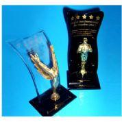 Troféu de acrílico com suporte escrito em dourado.